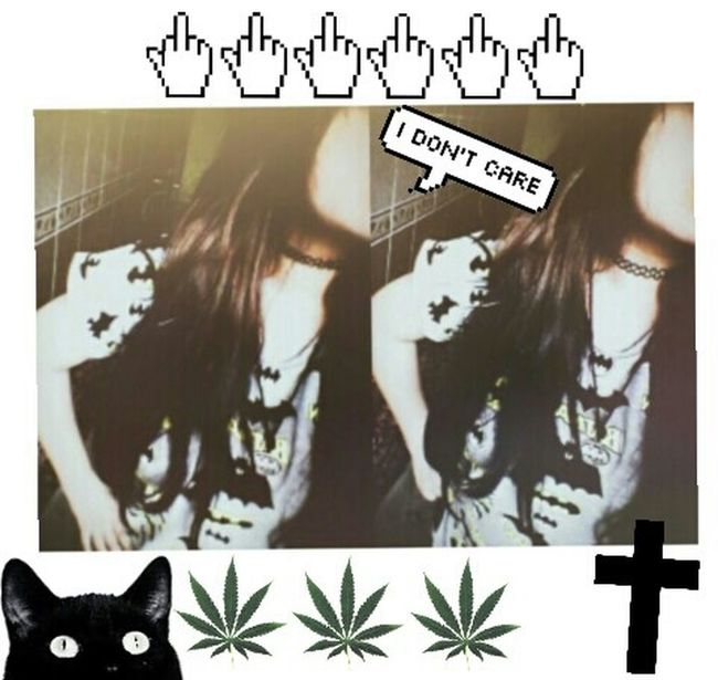 Hi! Cheese! ı Don't Care Grunge Vitange WTF!? Cat♡ Smokeweedeveryday Huff Cross