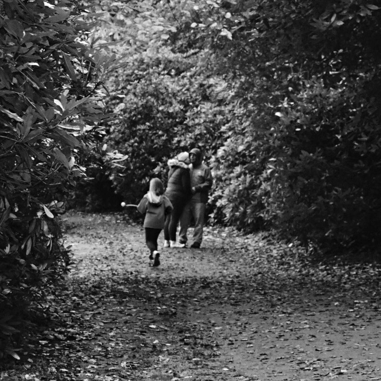 Wollaton Hall Enjoying Life Showcase: November The Following Enjoying Nature Walking Around