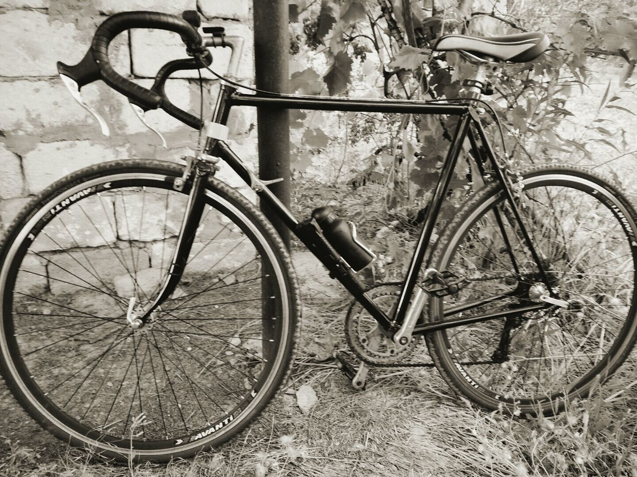 bicycle, transportation, mode of transport, land vehicle, stationary, parking, no people, outdoors, bicycle rack, day, old-fashioned