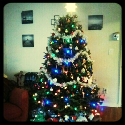 this years tree so excited our son came home from umo!!!