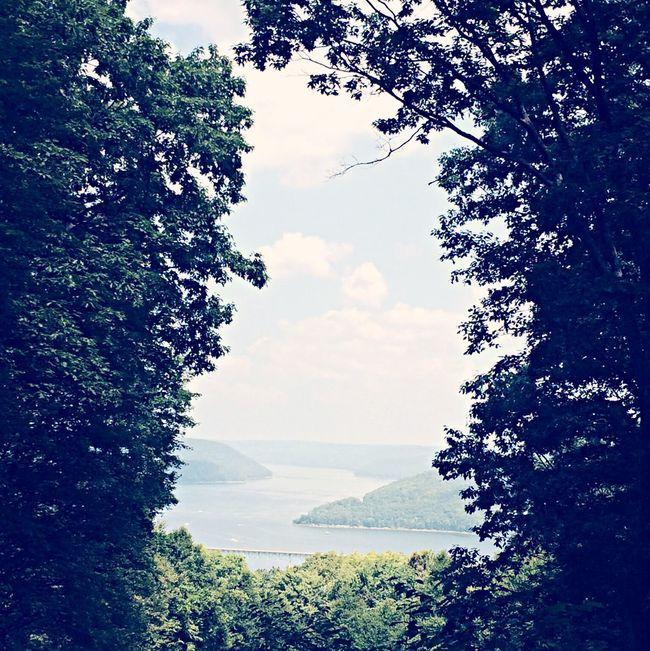 Allegheny National Forestt Allegheny River River Pennsylvania