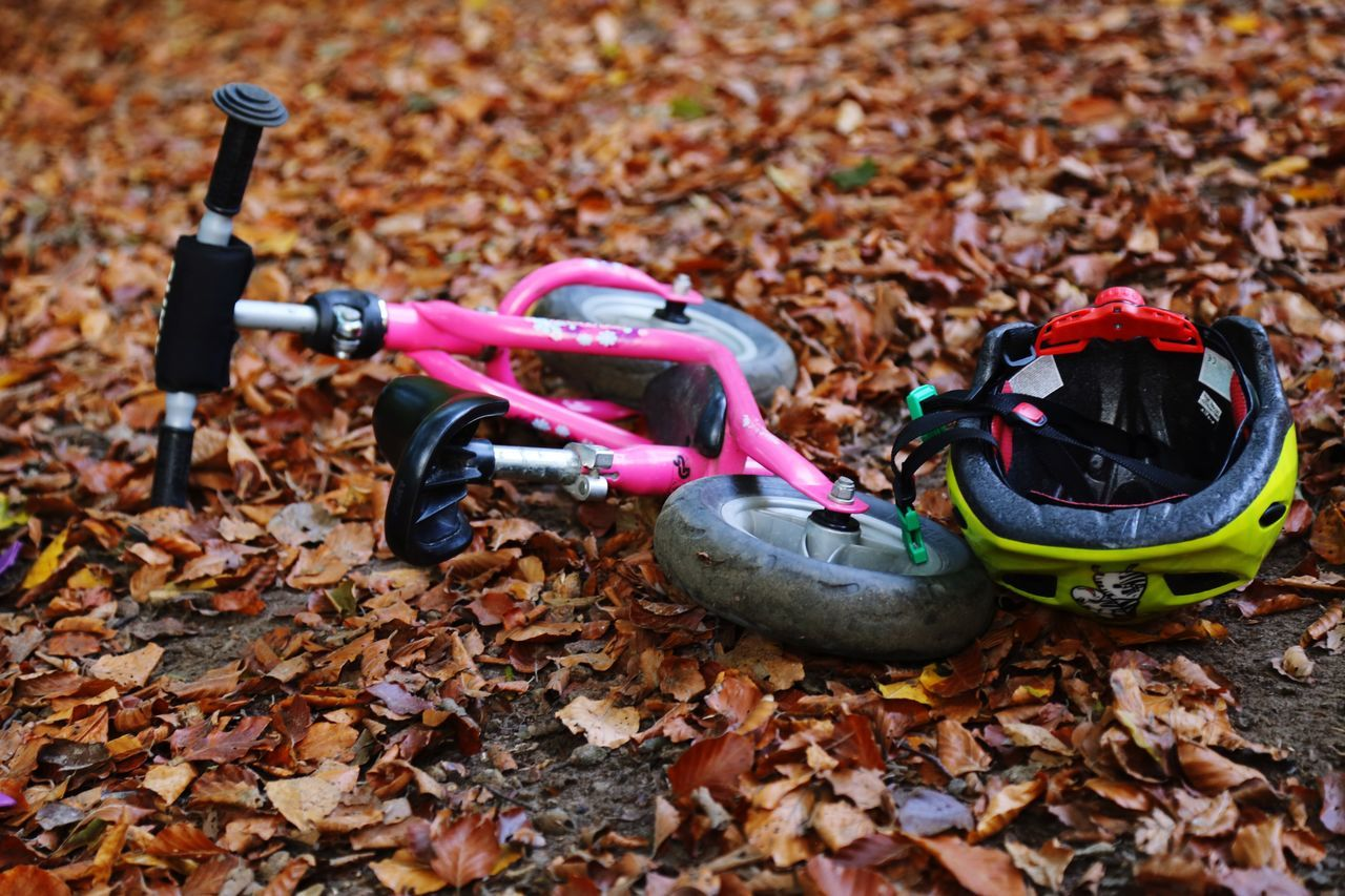 Bicycle Kids Bicycle Kids Toys Autumn Fall Leafs Fallen Autumn Leaves In The Woods Forest Lost Object Felling Fell Fell Down Down On The Ground Abandoned Abandoned In The Woods Pink Bike Crashed Lost DEEP FOREST Thrown Thrown Away Thrown Down Helmet