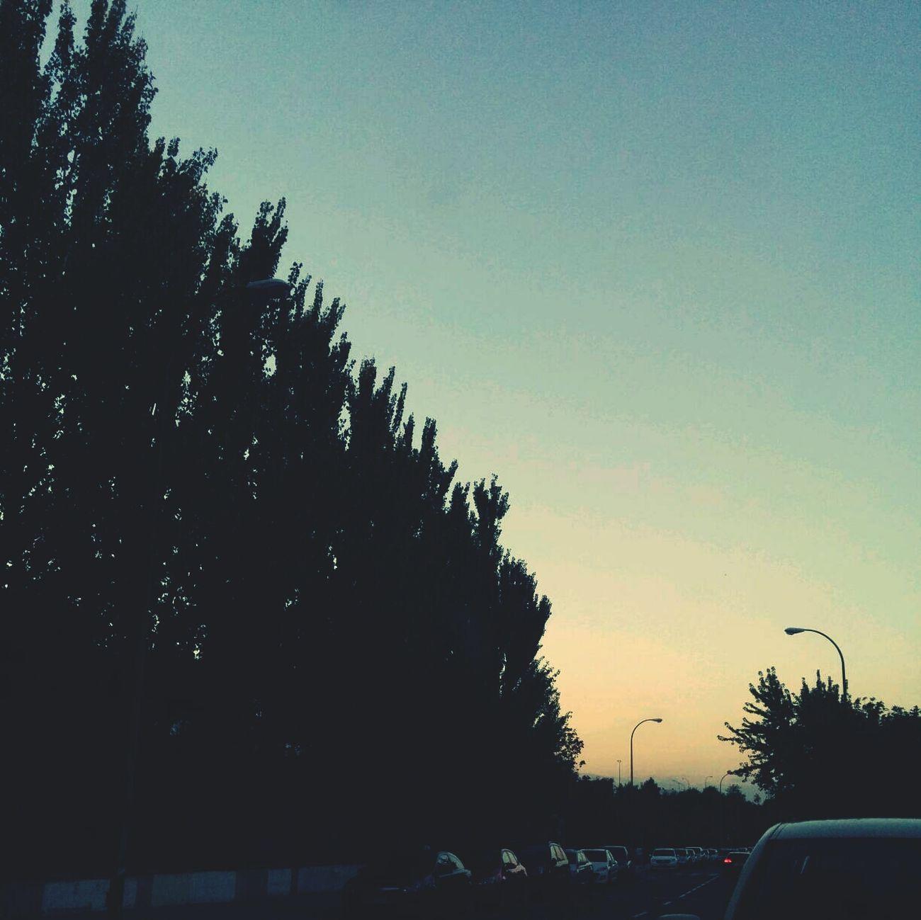 Anochece, que no es poco. Relaxing Twilight