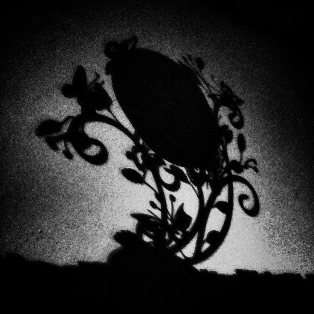Rapineau Shadow Shadowwork Blackandwhite