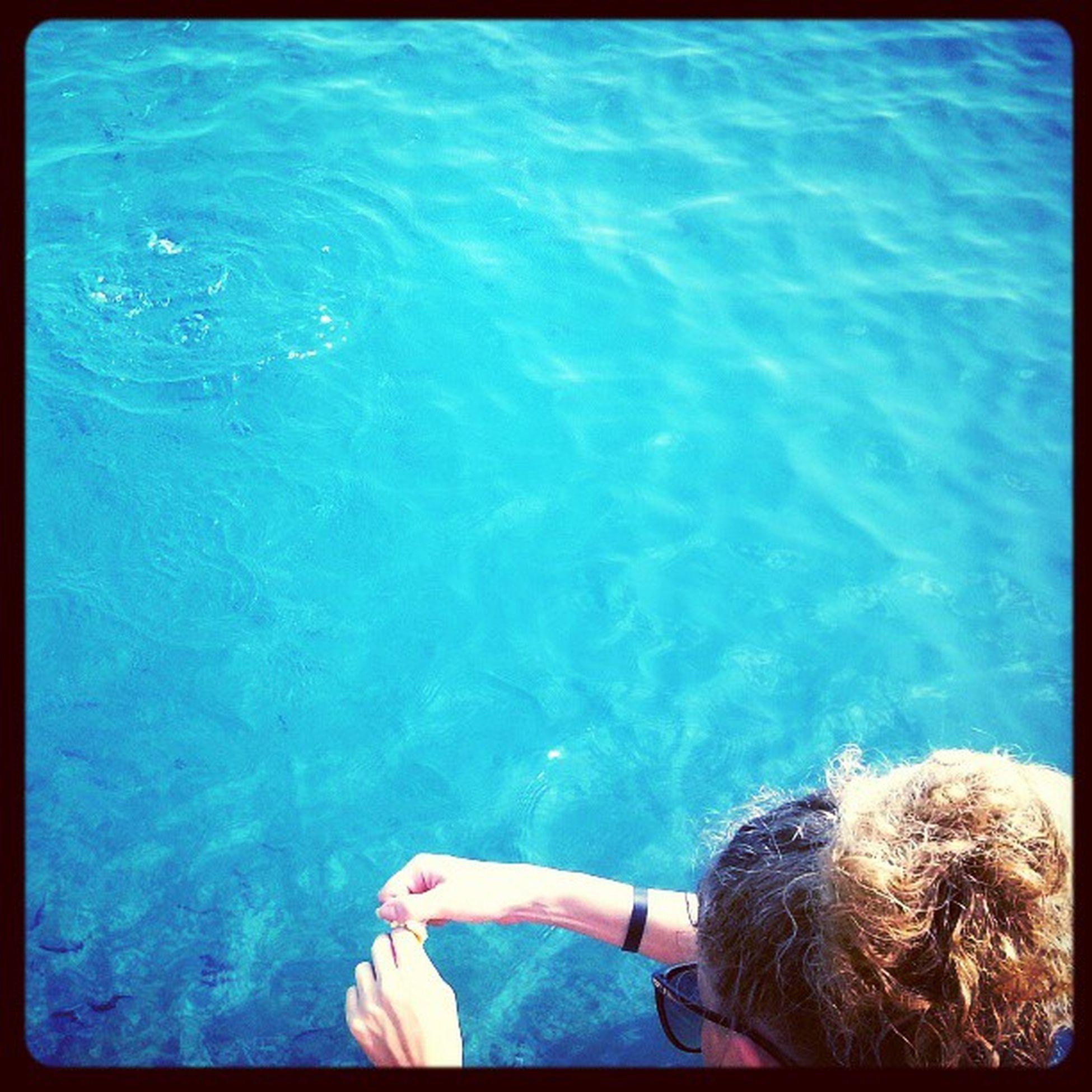 Эм...средиземноморье пожалуй...
