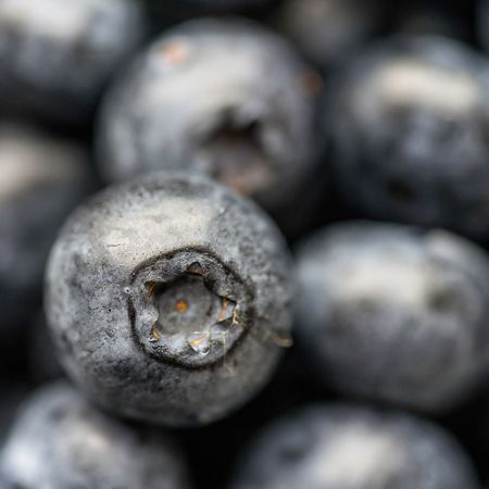 Blueberries No People Food Close-up Freshness Day Directly Above Fruit Taking Photos Blueberry Photoblogger Healthy Lifestyle Indoors  Organic High Angle View Ready-to-eat Studio Shot