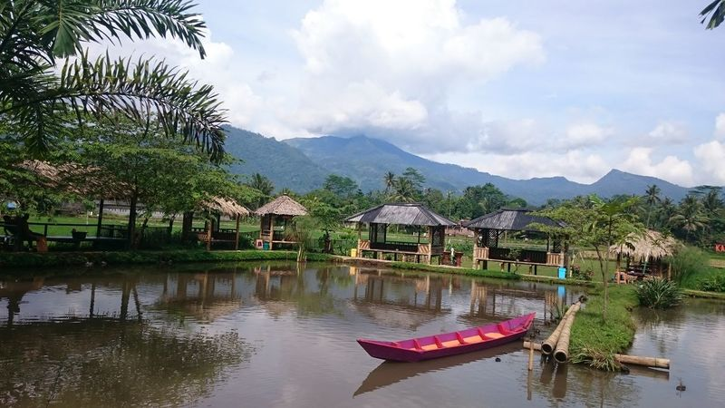 Ambarawa Central Java INDONESIA Nature