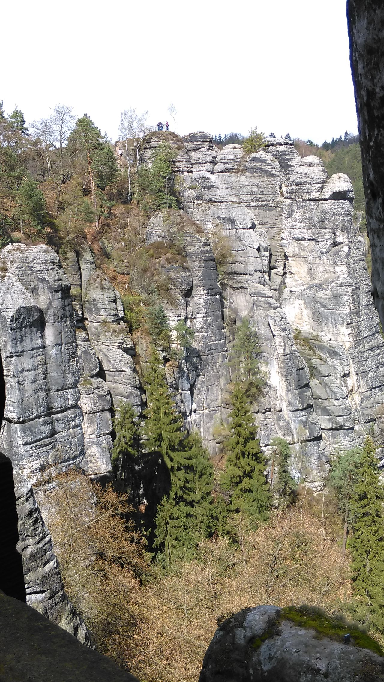 Elbsandsteingebirge Rathen Bastei Showcase April Sachsen Tadaa Community Sächsische Schweiz Enjoying Life EyeEm Best Shots Eye4photography  EyeEm