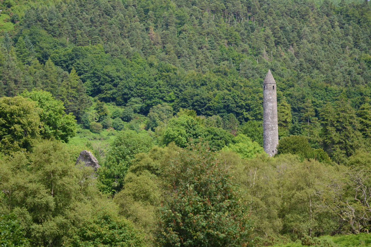 Rapunzel's Irish home Forest Glendalough Green Scenics Tower Round Tower Mediaeval