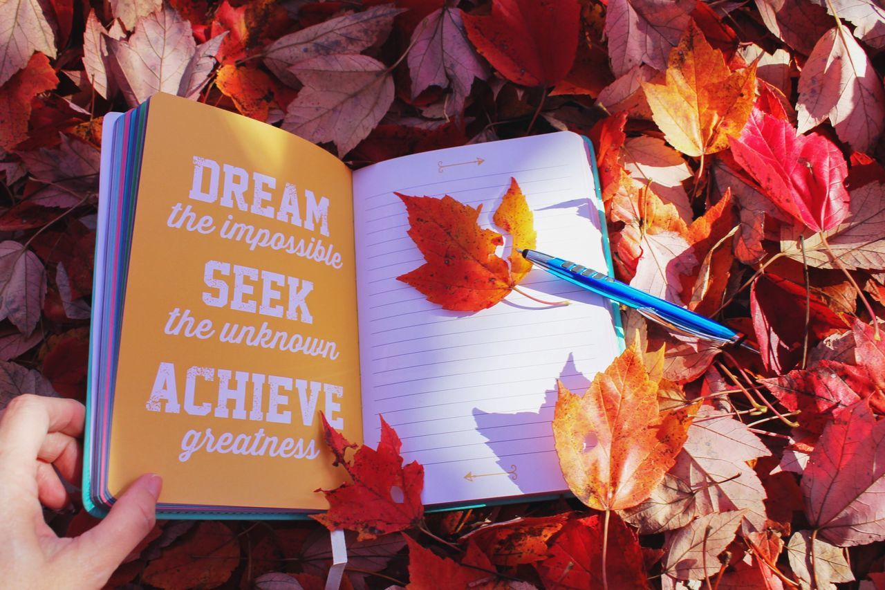 Create yourself. Dream the impossible. Seek the unknown. Achieve greatness. Autumn Leaf Human Hand Change Maple Leaf Nature Outdoors Fall Season Red Color Journal Notebook Diary Writing Book Foliage Leaves Inspirational Motivation Dreamer Vision Reflection And Thought Dreaming Words Achievement Autumnal inspirational moments. Don't let the sun go down on you. Annie1029 The Week On EyeEm Paint The Town Yellow Be. Ready. EyeEm Ready