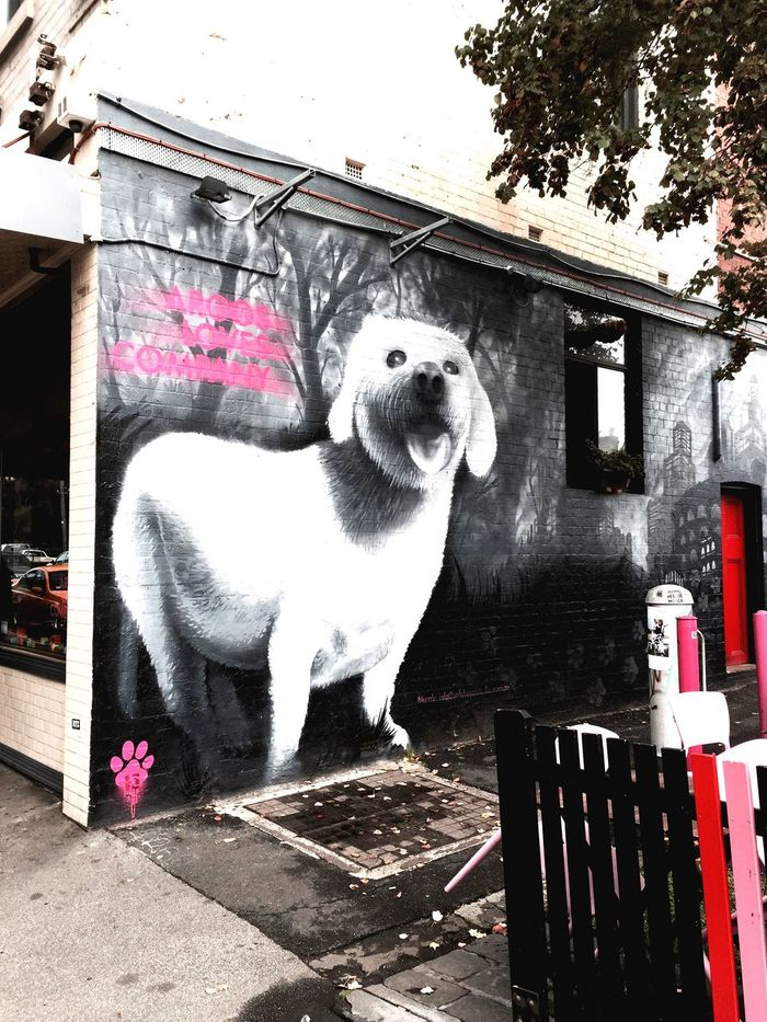 Photographic Approximation Streetart/graffiti Dogs In Art
