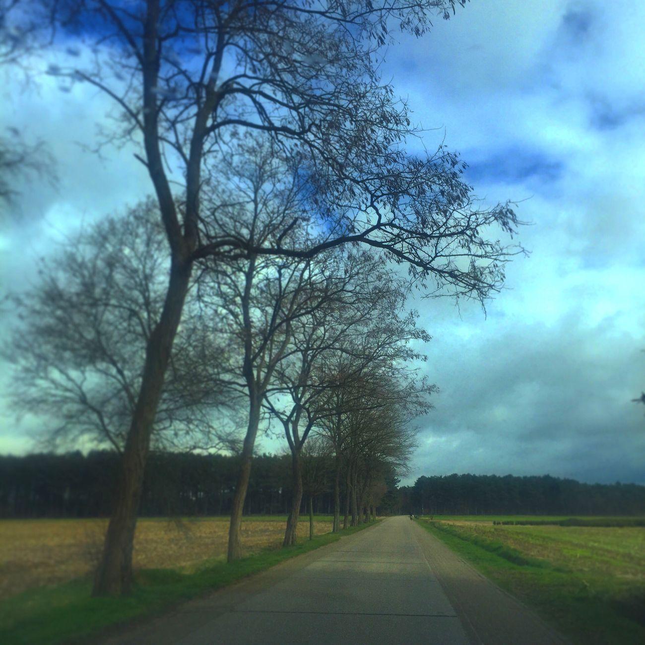 Door Lille,gierle & Poederlee Auto bomen Bomen Turnhout Belgium Kaartenstad First Eyeem Photo