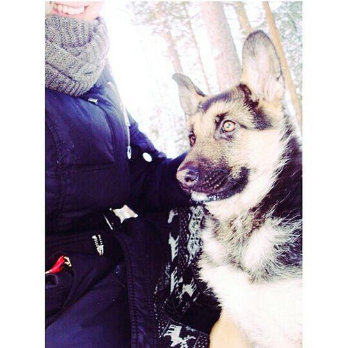 My dog Love ♥ Animal Nature