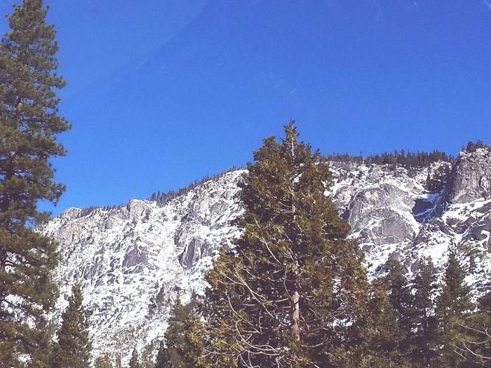 Snowcapped Mountain Trees And Sky Winter Wonderland Mountain Peak