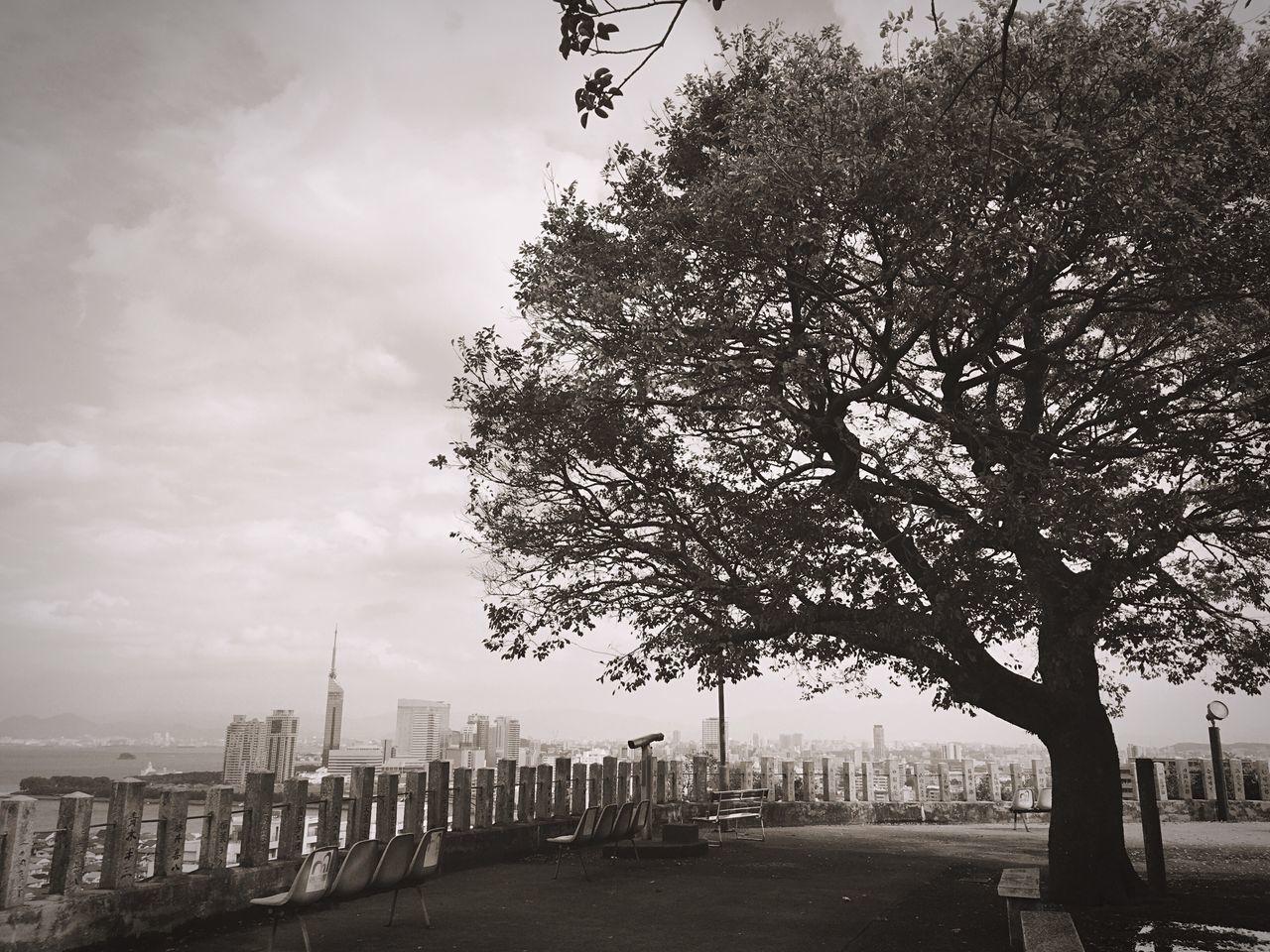 鷲尾愛宕神社からの景色〜 City Sky Tree Cloud - Sky Urban Lifestyle Urbanphotography Urban Landscape Urban Clouds And Sky Cityscape Sky And Clouds Beauty In Nature Skylovers Eyeemphotography Urban Skyline Skyporn Skyscraper Sky_collection Cityscape Cityscapes Sea Tree Trees And Sky Japanese Shrine Fukuoka,Japan
