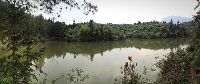 China Guangdong 自然 森林 山 水 碧绿