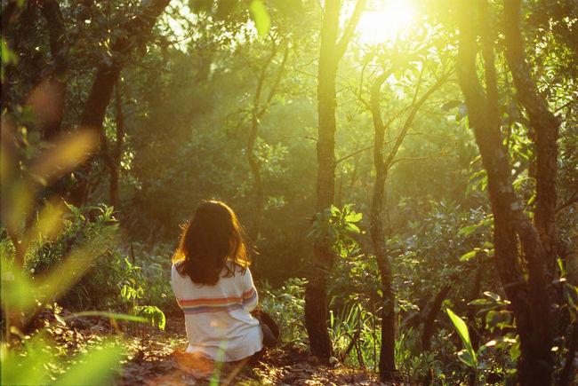 135 35mm Film Girl Solitude Sunset Sunshine Warm Woods