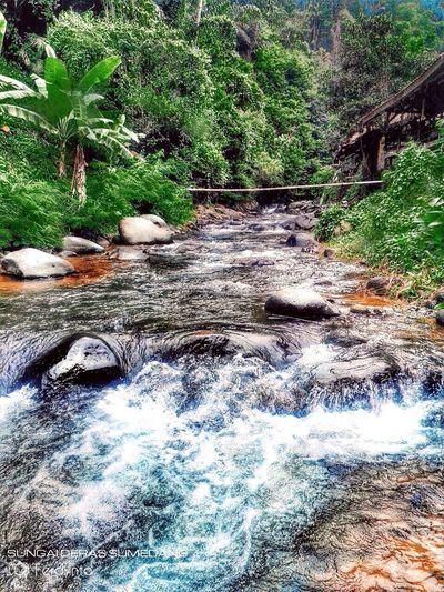 Nature River HighlandFresh #ipad