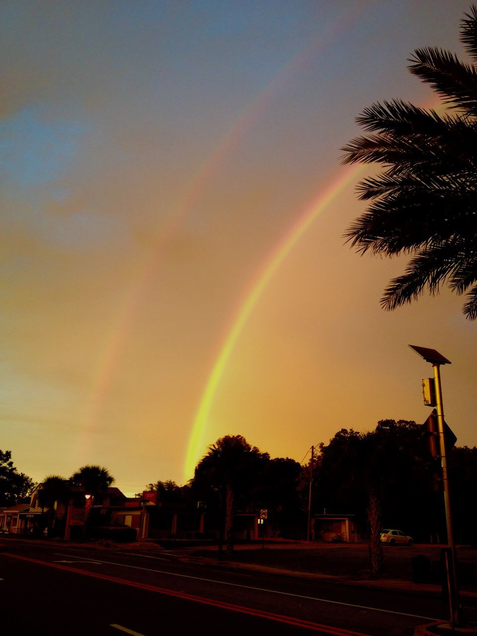 rainbow, tree, sky, sunset, double rainbow, scenics, outdoors, no people, road, street light, beauty in nature, nature, day