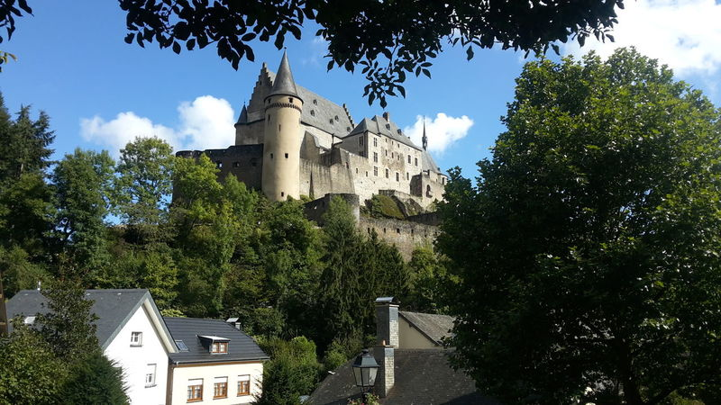 Tree Architecture History Vianden Castle