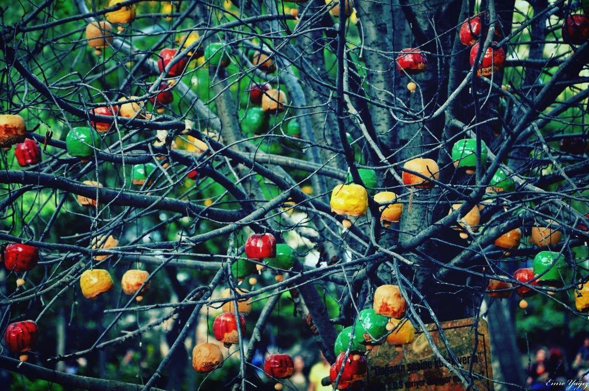 Bells Trees Parks Making The World Colorful EyeEm Best Shots EyeEm View EyeEmBestPics