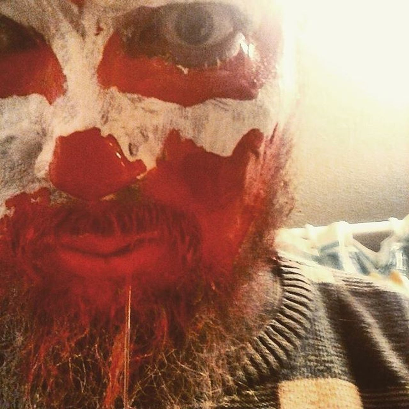 Tasty Dead. Selfie Halloween Facepaint BLOODY Whoopwhoop Mcl Producer Artist Emcee Horrorcore Horror
