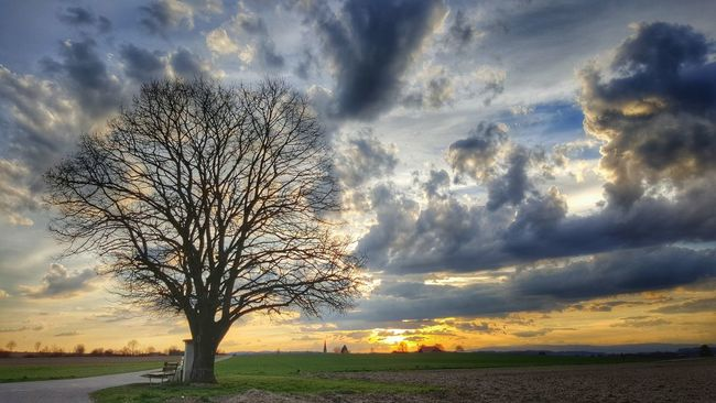 Relaxing Landscape Rural Scene Outdoors Beauty In Nature Nature Atmospheric Mood Cloud - Sky Green