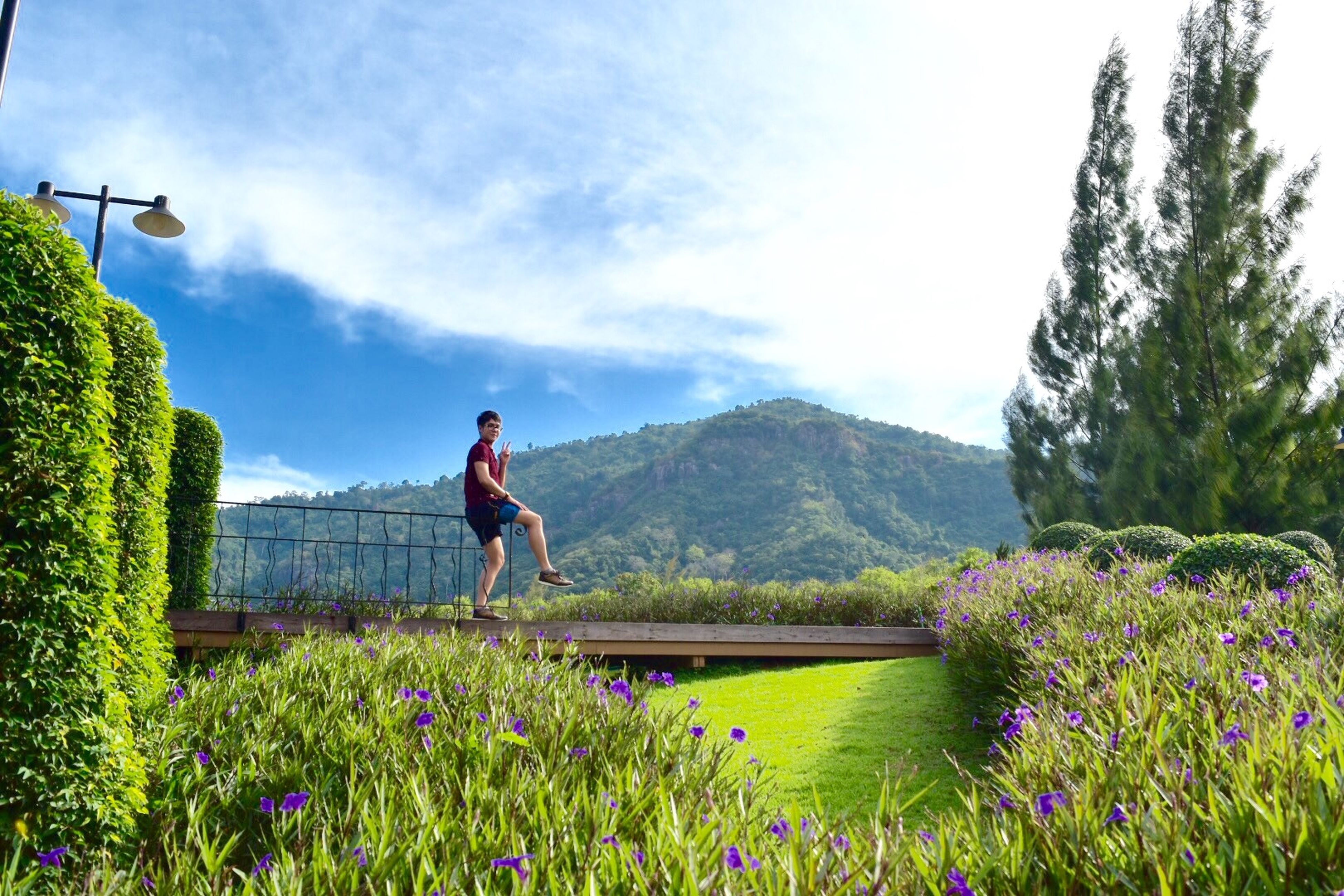 lifestyles, leisure activity, full length, casual clothing, sky, rear view, mountain, plant, standing, flower, nature, person, beauty in nature, men, growth, sitting, grass, field