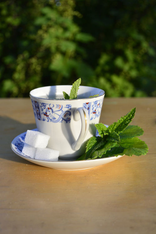Close-up Day Drink Food Food And Drink Freshness Herbal Tea Melisse Mint Leaf - Culinary Mint Tea Minze Refreshment Relaxation Table Tea - Hot Drink Visual Feast Foodphotography