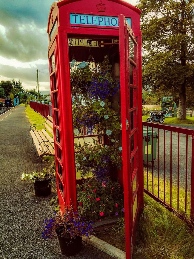 Communication Red Sky Outdoors Cloud Day Cloud - Sky Phone Phonebooth Phonebox Flowers Flower Flower Collection Wales❤ Wales Nikonphotographer Nikond3300 Holiday Nikon EeyemBestPhotography Eeyemgallery EeYem Best Shots Eeyem Photography Eeyem