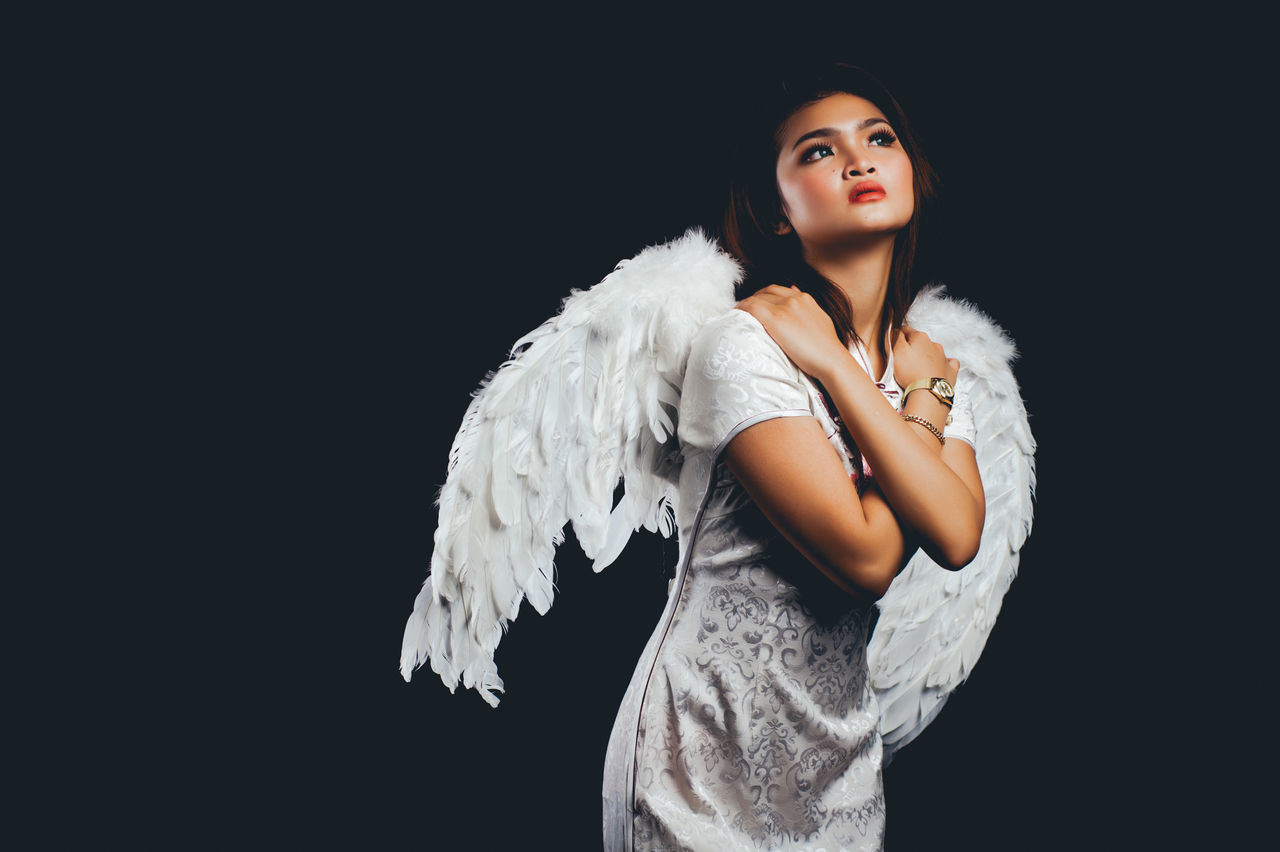 Adult Adults Only Angel Animal Wing Beautiful People Beautiful Woman Beauty Black Background Cute Elégance Feather  Heaven Looking At Camera One Person One Woman Only One Young Woman Only Only Women People Portrait Studio Shot Waist Up Young Adult