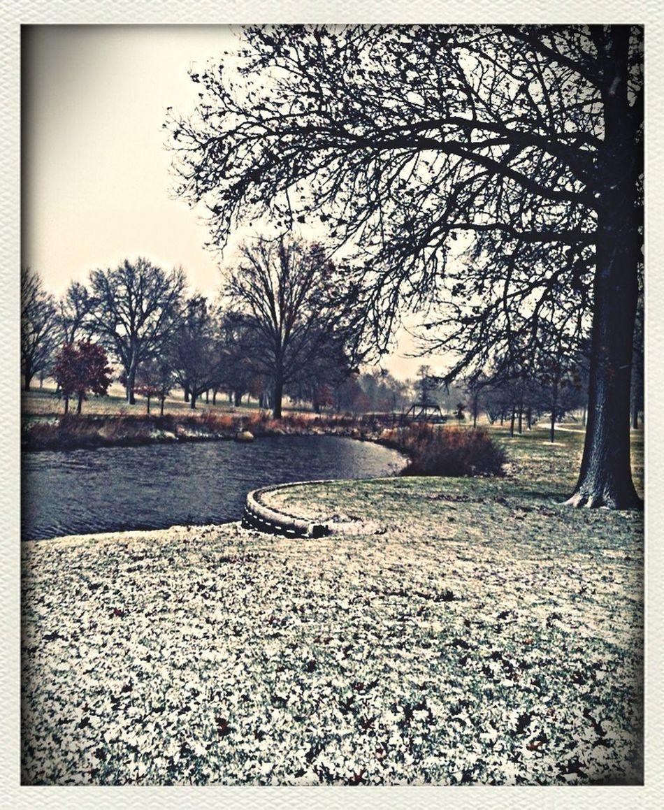 Multiple Layers Snow Snowy Days... Snowy Morning Snowy Winter November Wintertime