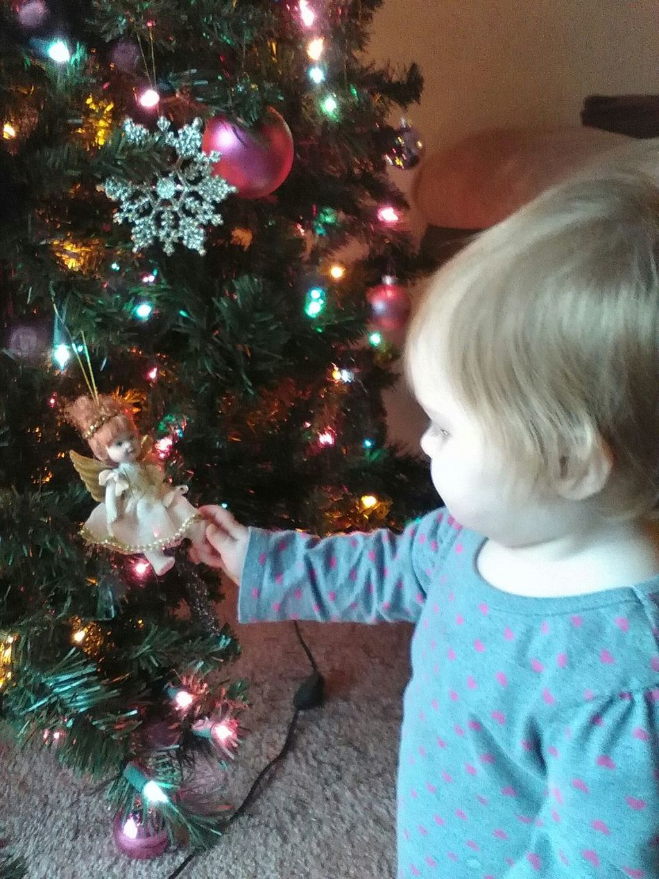 MISS BAILEY Checking Out The Angel On The Christmas Tree First Eyeem Photo