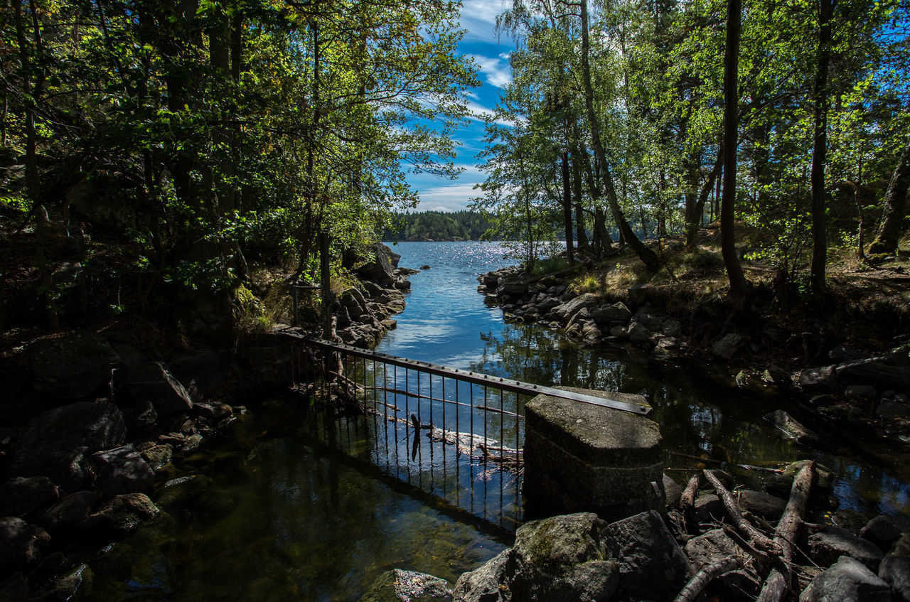 The river Taking Photos Water Sky Amazing Outdoors Amazing View Beauty In Nature Senic View Idyllic Nature Tree Senic Remote Tranquil Scene Woods Forest Rock Nature Photography Nature_collection Cloud Mirror Scenics Day Cloud - Sky