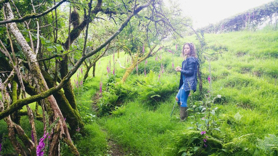 Foxglove Grove Tree Real People One Person Leisure Activity Lifestyles Full Length Outdoors Day Nature Sky People Childhood Young Adult Young Women WoodLand Wales Hill Grass Foxgloves Britain Farmland Summer Dreamy