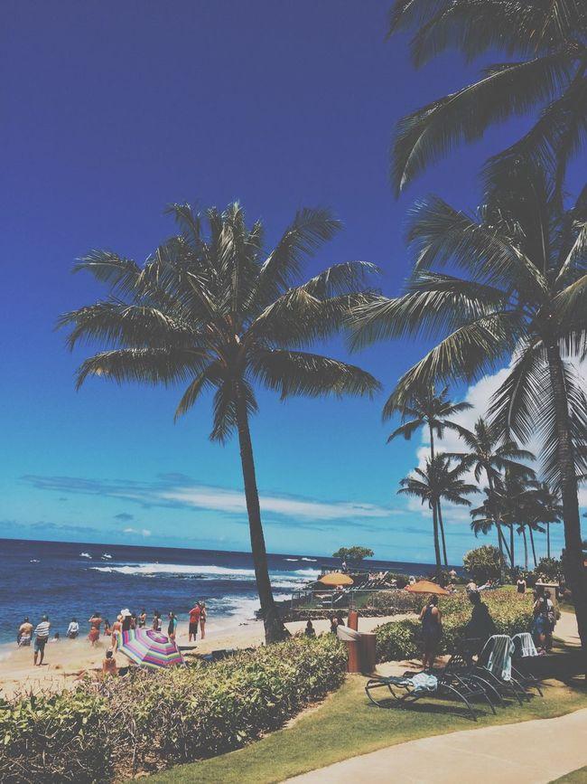 Living at its finest. Beach Hawaii Kauai Palm