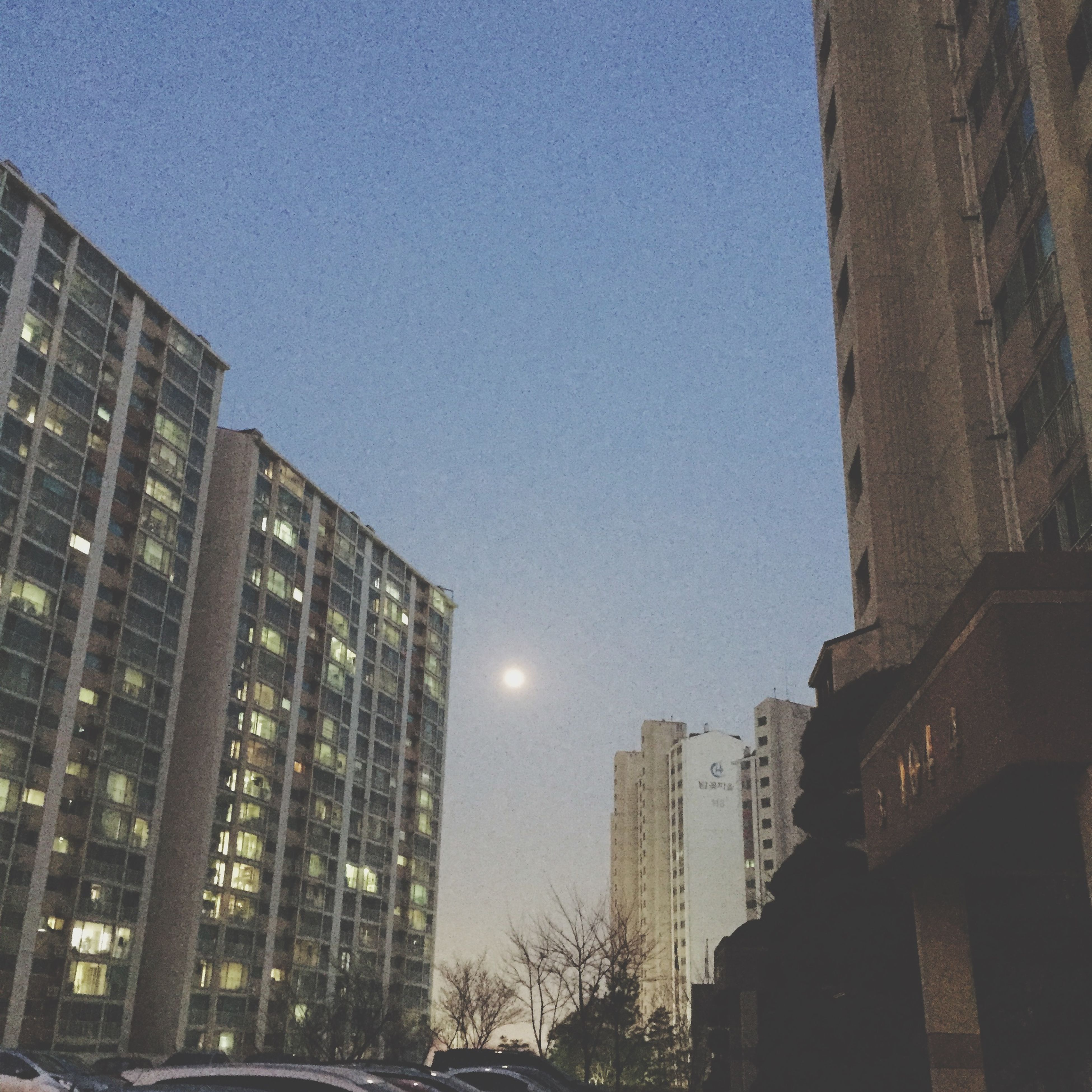 architecture, building exterior, built structure, low angle view, clear sky, night, illuminated, city, building, moon, copy space, sky, residential building, outdoors, modern, residential structure, blue, no people, tall - high, tower
