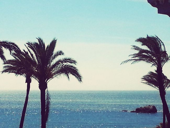 Hello World Check This Out Enjoying Life Taking Photos Hanging Out Warum Nicht Einfach So? Eyem Artist Estepona Open Edit For Everyone Fotography Smart Simplicity Smartphone Photography Spain, Andalucia Seascape Photography Sea And Sky
