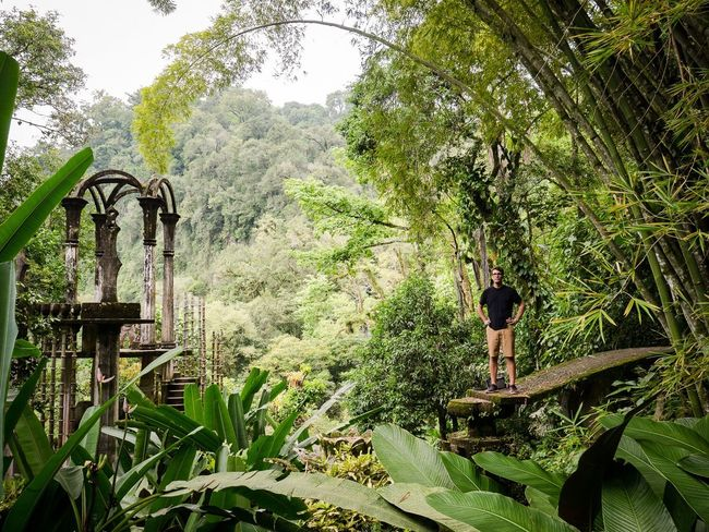 Surreal Jungle Naturelovers Xilitlaslp Beauty In Nature One Person