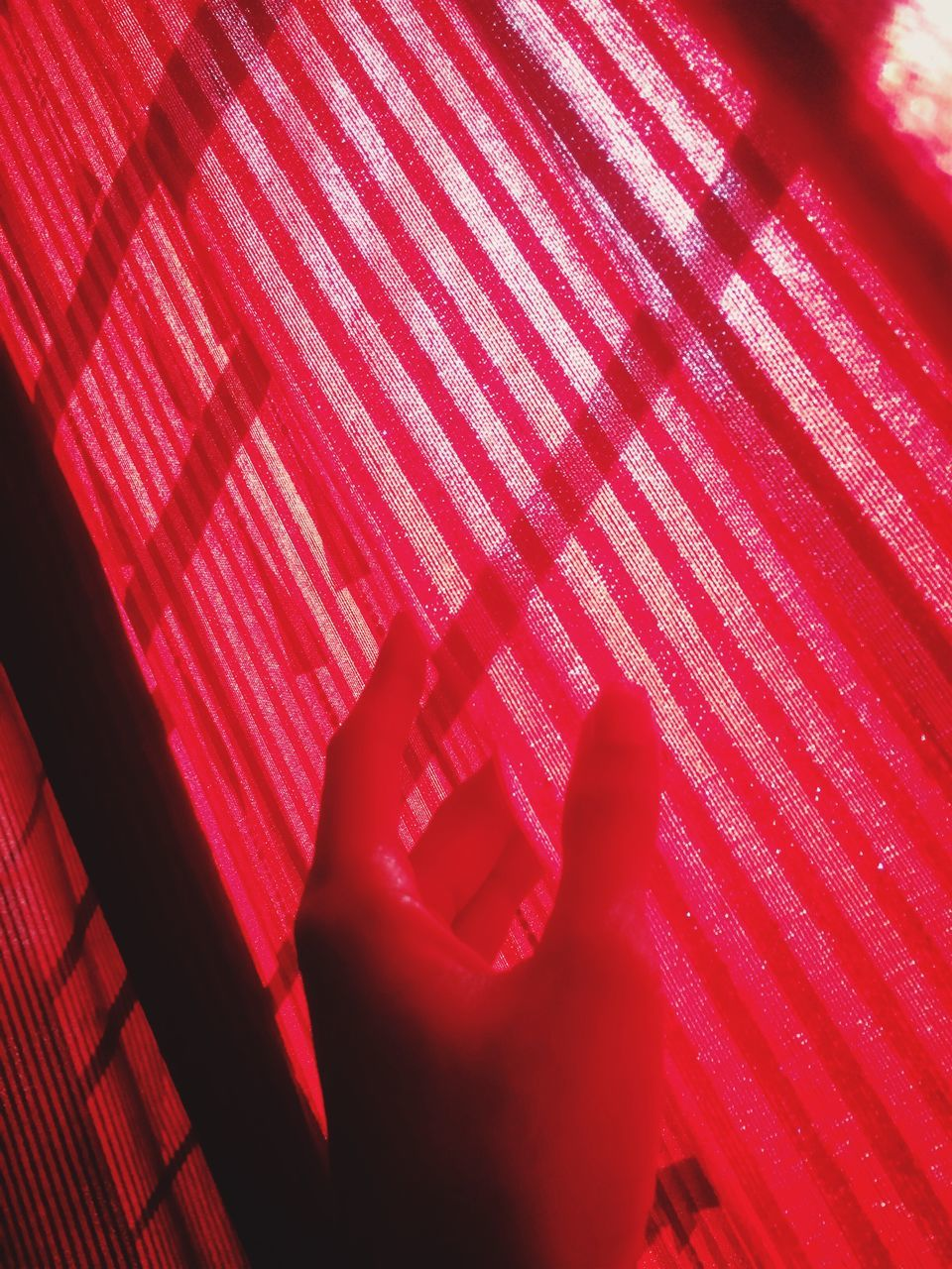 red, indoors, real people, close-up, one person, human hand, day, people
