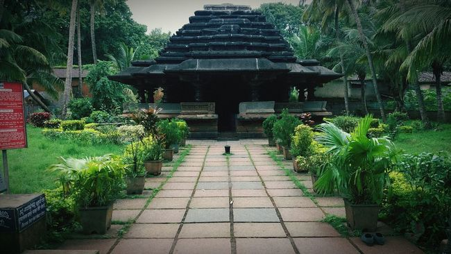 Great monument ,peace of Buddha and mahaveer Beauty In Nature Footpath Architecture Growing Outdoors First Eyeem Photo