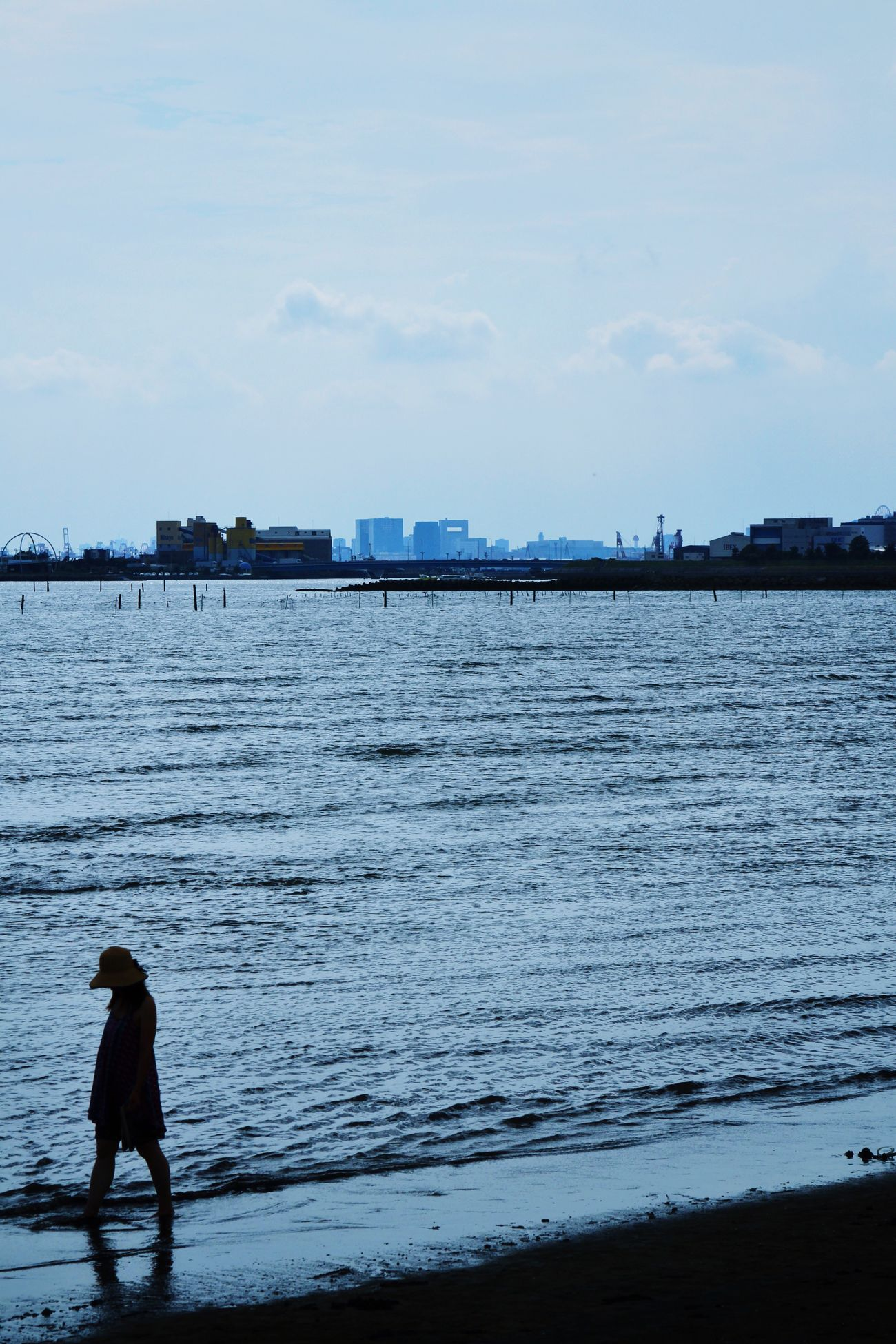 Well,This is Tokyo Blue Seaside Beach Tokyo Bay Summer Canon EOS 7D Kasai Rinkai Park in Tokyo Japan