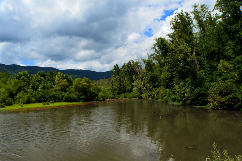 Beauty In Nature Caryville Tennessee Cloud Cloud - Sky Cloudy Cove Lake State Park Day Green Color Idyllic Lake Landscape Lush Foliage Mountain Mountain Range Nature No People Outdoors Reflections ☀ Sky Summer 2016☀️☀️ Tranquil Scene Tranquility Tree Water