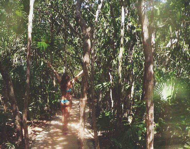 Riviera Maya Mexico Yucatan Mexico Xcaret Tranquility