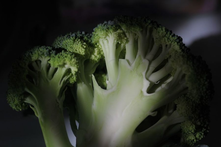 Vegetable Healthy Eating Food Freshness Close-up No People Indoors  Day Brokoli