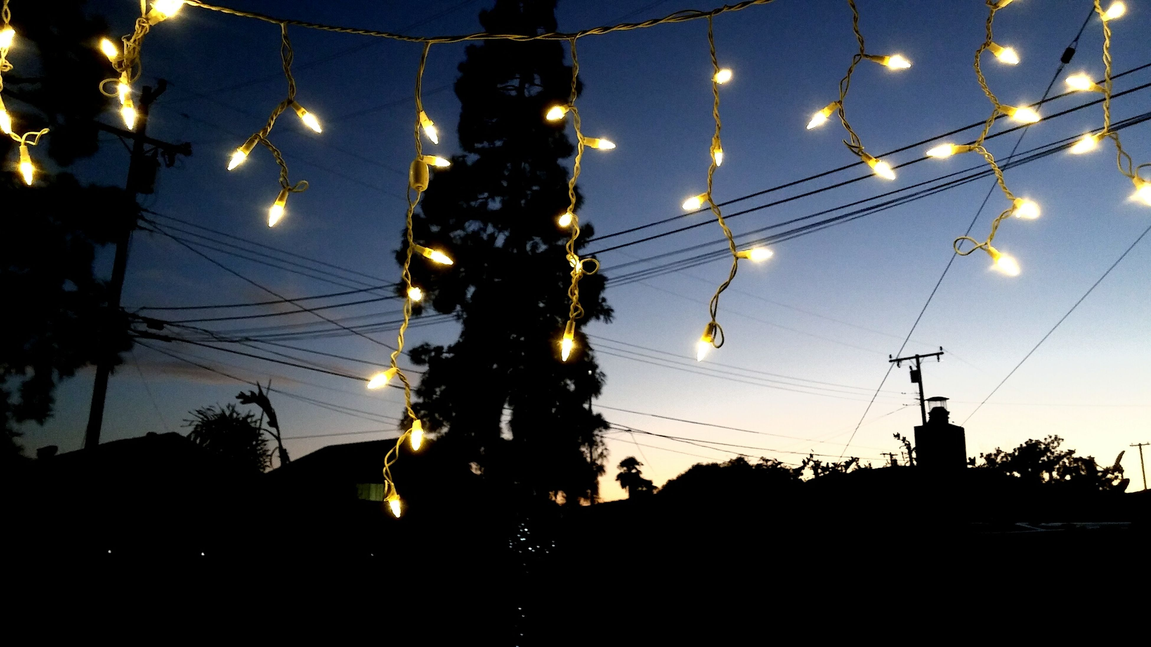 Beautifully Organized Tree Sky Low Angle View Illuminated Electricity  Christmas Lights Night Outdoors Imperfectsymmetry