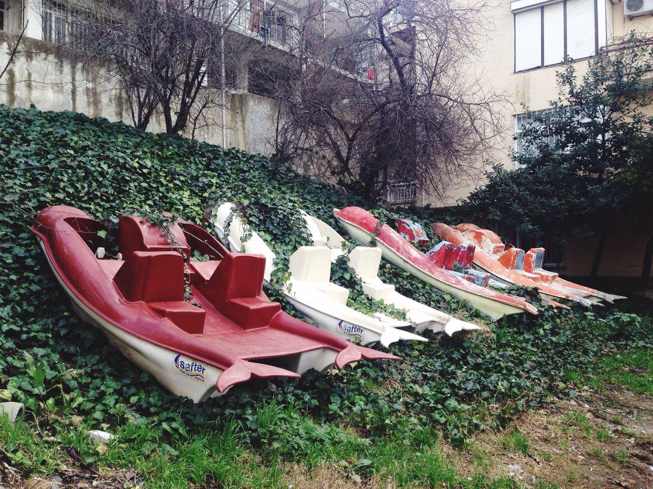 İmproperparking Parking Street Istanbul Buyukcekmecesahil Enjoying Life Green Plants Ship Colors