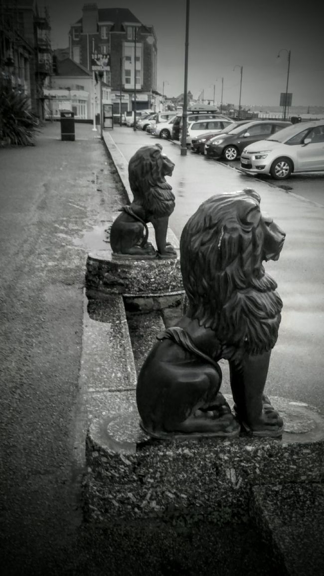 Lions on guard duty. Not the original ones but cool all the same. I have quite a few of them. Adults Only Still Life Street Photography From My Point Of View Monochrome Photography EyeEmBestPics Eye4photography  EyeEm Best Shots - Black + White Eye4photography  Walking Around From My Perspective Walking Around The City  Random Black & White Beuatiful❤ Photo Of The Day Photography In Motion Street Pics  Photos Around You Street Photographer EyeEm Best Shots Streetphoto_bw Textures And Surfaces Street Furniture Animal Themes