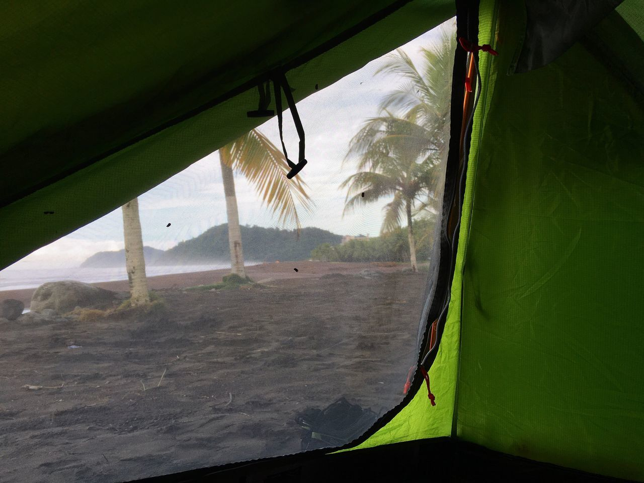 Wakeup Camping Nature On The Beach Landscape Adventure Jungle Morning Morning Light Palm Palm Tree View Tent Bivouac Backpacking Backpacker Adventurer Costa Rica Miles Away Beach Jaco Beach Pacific Coast Central America Wake Up My Year My View