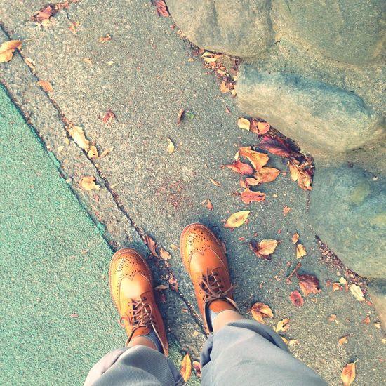 It's autumn!! Tricker's Autumn Travelingfoot